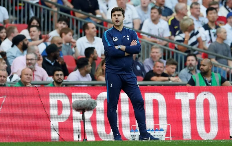 Mauricio Pochettino prepared to offload a number of players