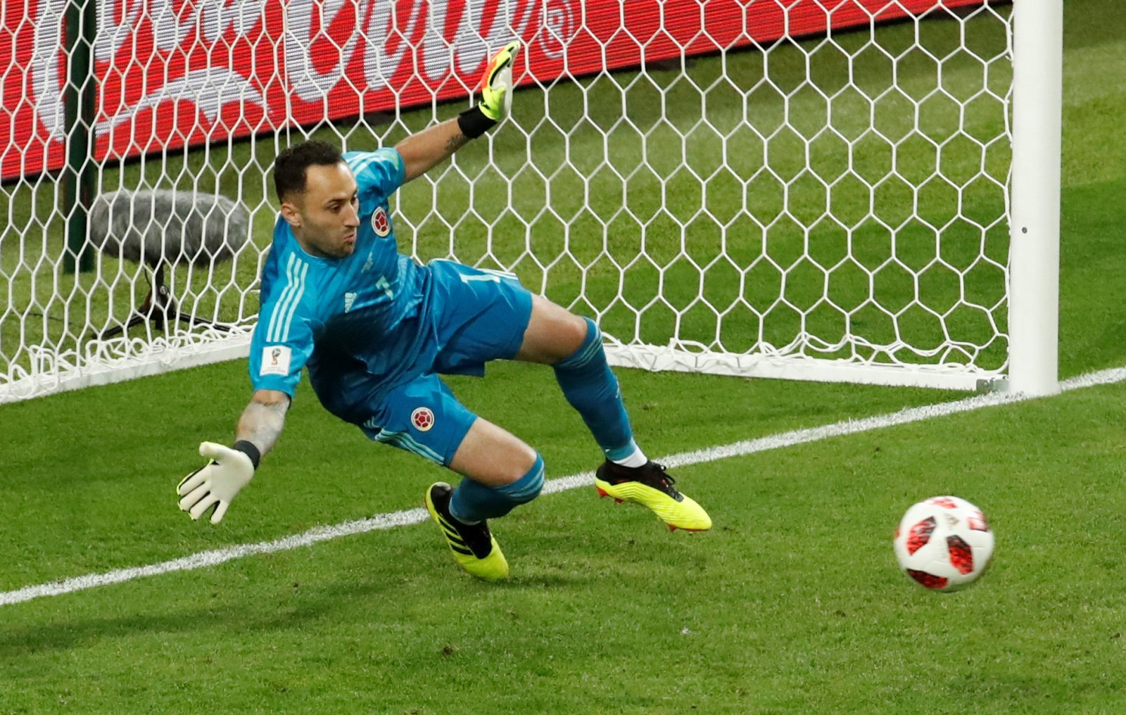 David Ospina would be the ideal long-term Craig Gordon replacement at Celtic