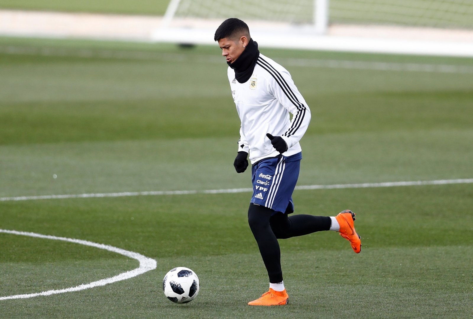 Newcastle should hijack Everton's deal for Marcos Rojo