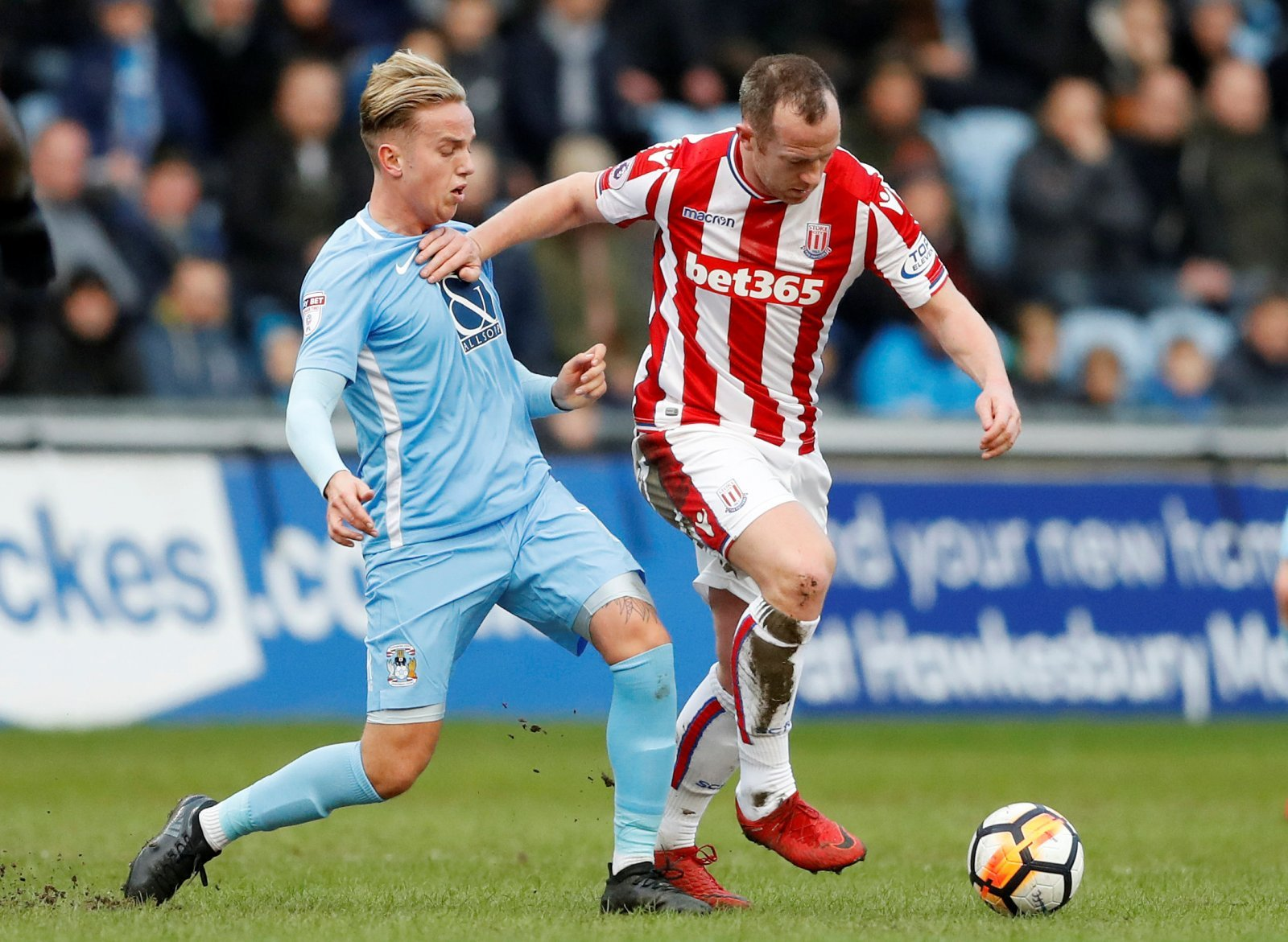 Recent reports should prompt Pulis to seek reunion with Charlie Adam at Middlesbrough