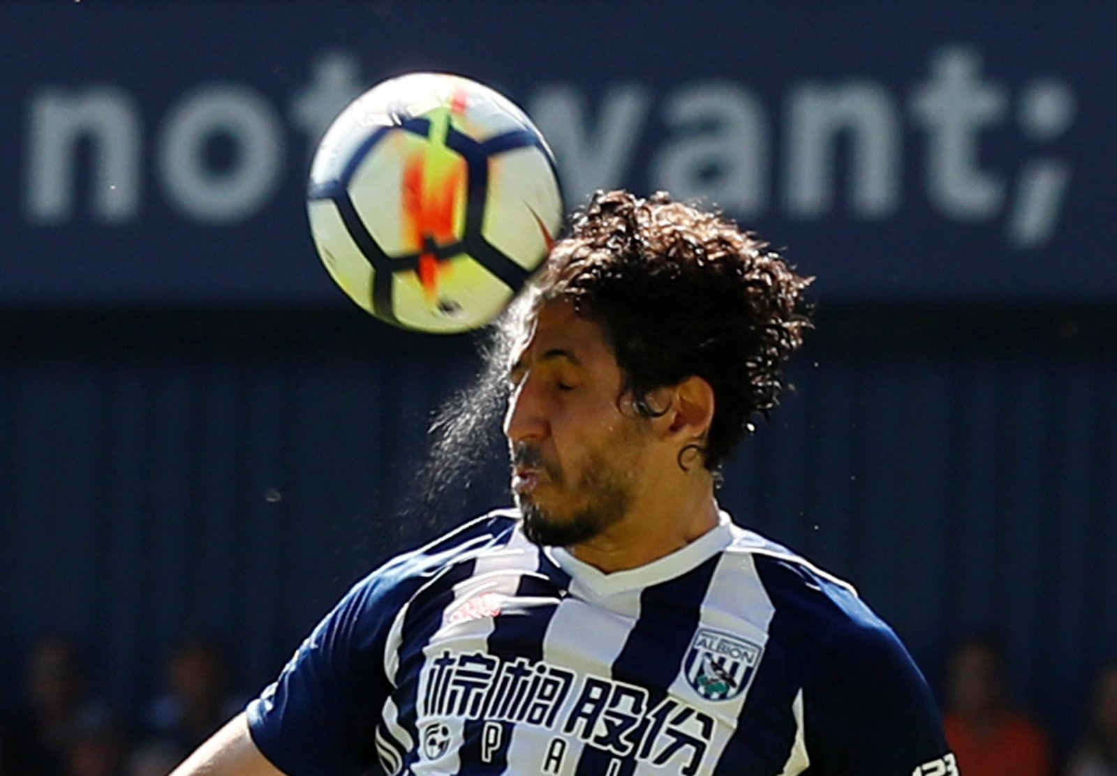 West Bromwich Albion: Fans praise Ahmed Hegazi after he keeps clean sheet for Egypt