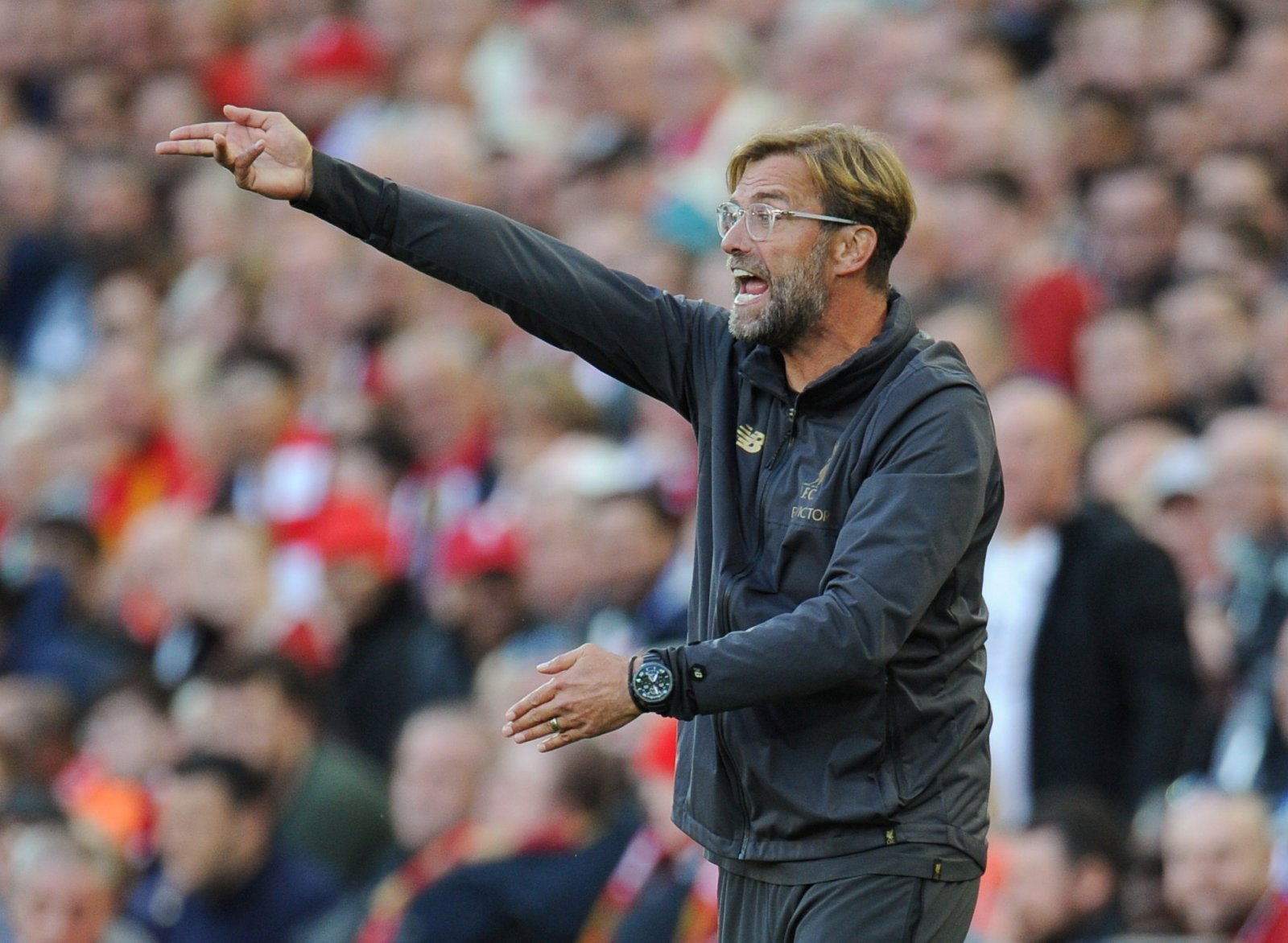 Robust: Liverpool will easily control Tottenham if Klopp selects this dynamic midfield