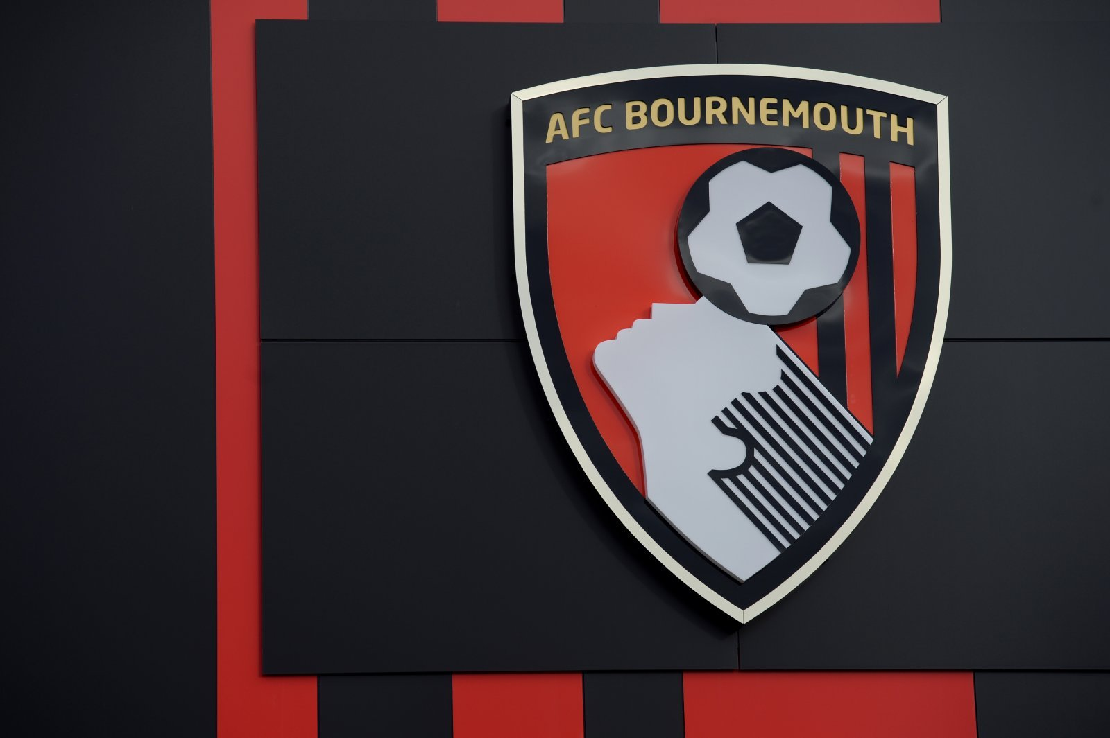 What does the future hold for Bournemouth?