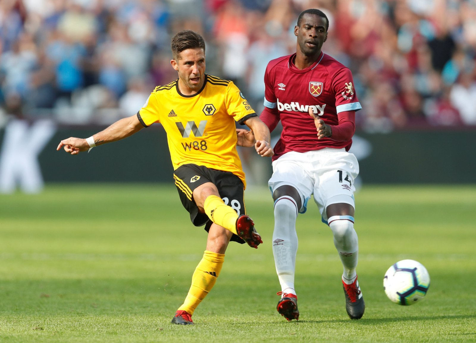 Bull spot on about Wolves new boy Moutinho