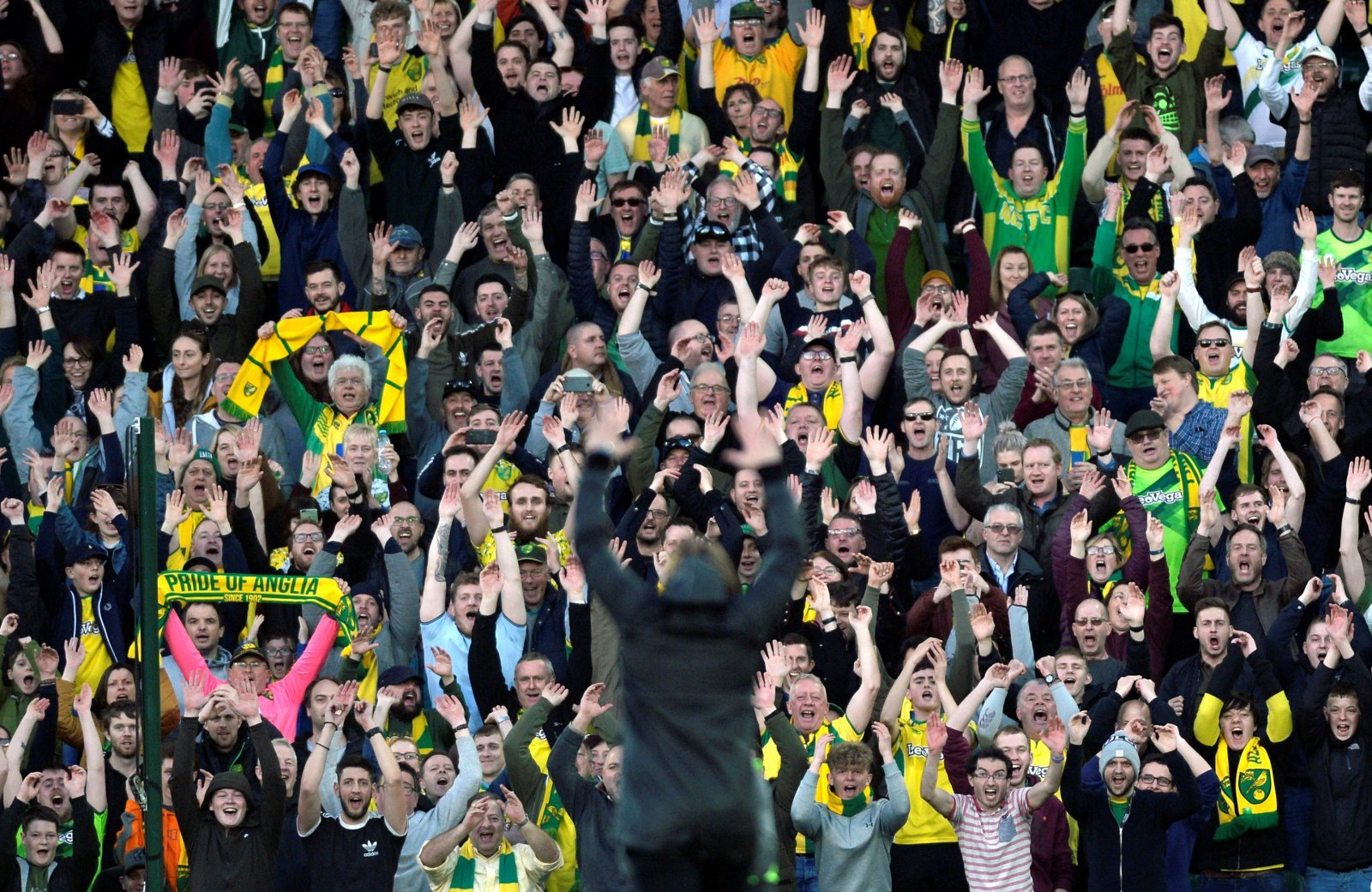 Norwich City: Daniel Farke and his side pick up LMA performance of the week award
