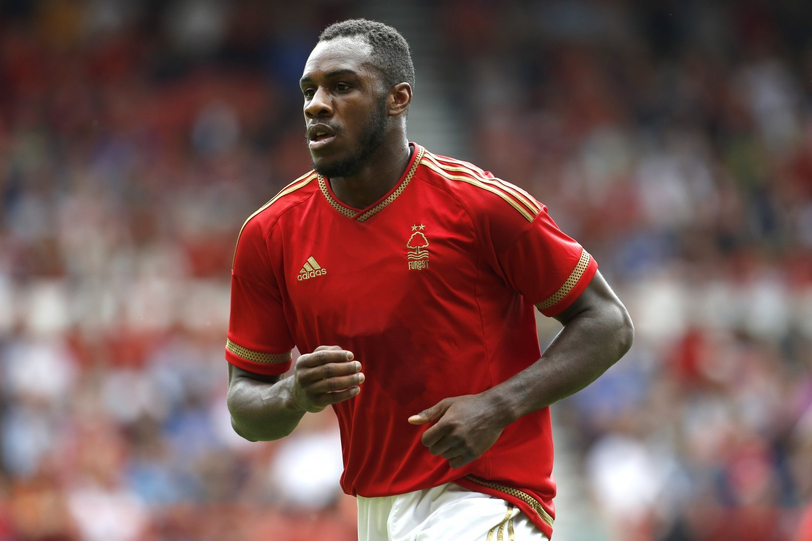 Look at him now: Michail Antonio and Nottingham Forest
