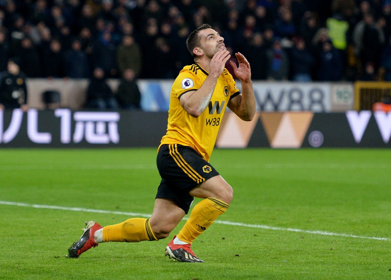 Wolves: Fans pour in messages to Jonny Otto after pre-match tweet