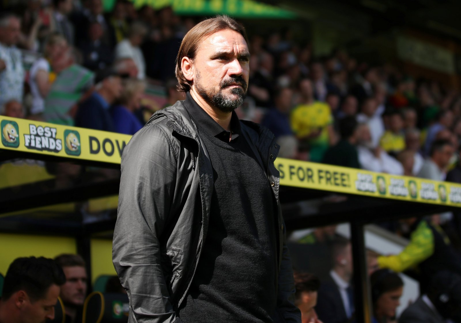 Norwich City: Daniel Farke claims he is at the right club