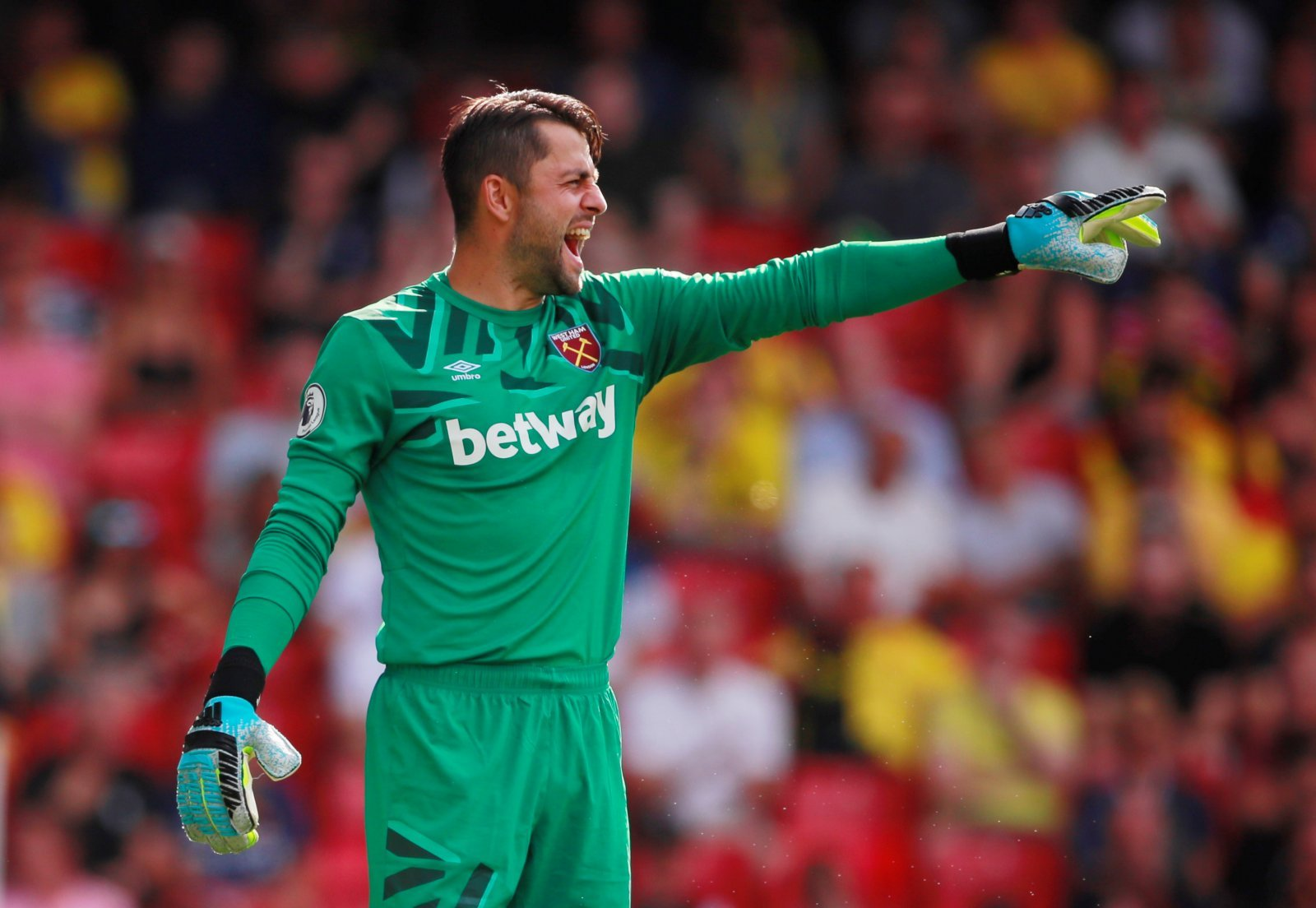 West Ham United: Many fans feared the worst after Lukasz Fabianski was injured